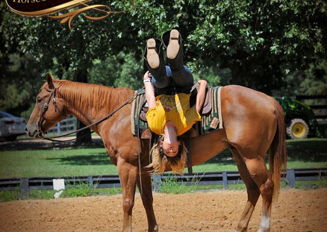 022-Ray-AQHA-Sorrel-Doc-O'lena-gelding-for-sale