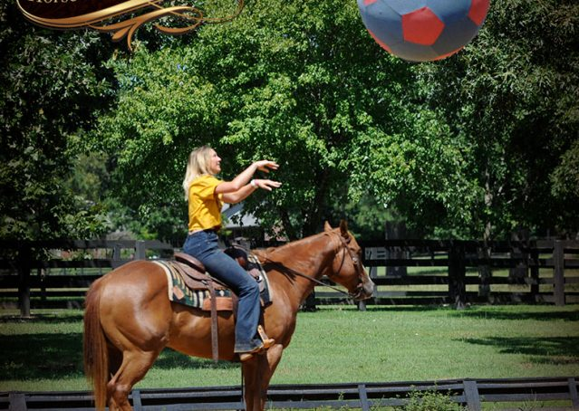 026-Ray-AQHA-Sorrel-Doc-O'lena-gelding-for-sale