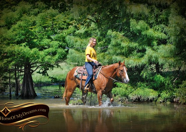 034-Ray-AQHA-Sorrel-Doc-O'lena-gelding-for-sale