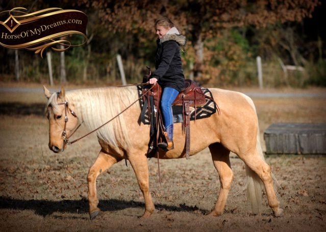 010-Clark-AQHA-Golden-Palomino-For-Sale-Flaxen-Mane