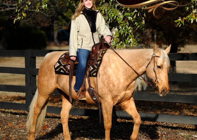 023-Clark-AQHA-Golden-Palomino-For-Sale-Flaxen-Mane