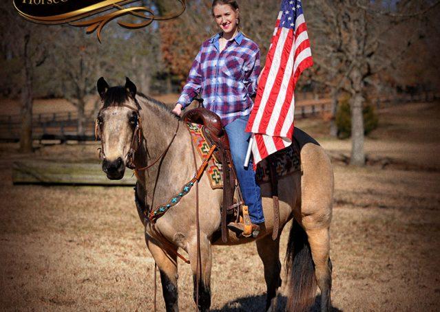 003-Timber-Buckskin-Quarter-Horse-Gelding-For-Sale-Trails-Family