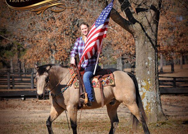 005-Timber-Buckskin-Quarter-Horse-Gelding-For-Sale-Trails-Family