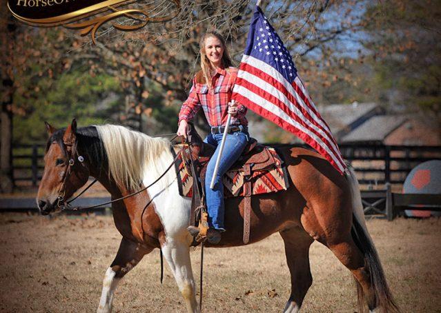 011-Henry-Reno-Paint-Draft-Cross-Gelding-Horse-Beginner-Trail-For-Sale