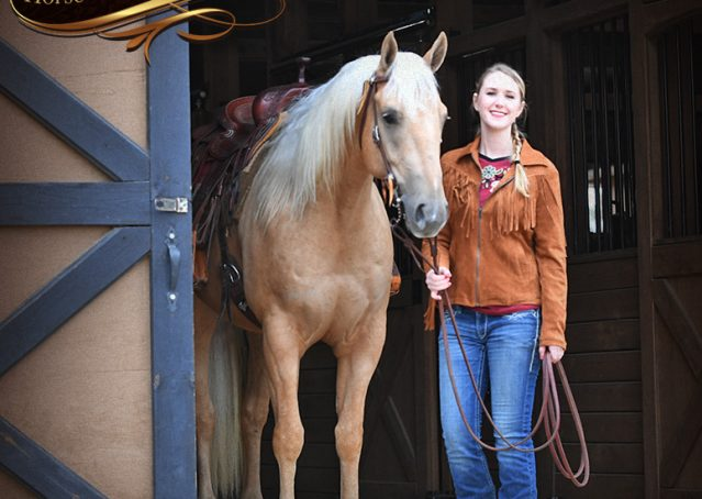 002-Odie-AQHA-Palomino-Gelding-For-Sale