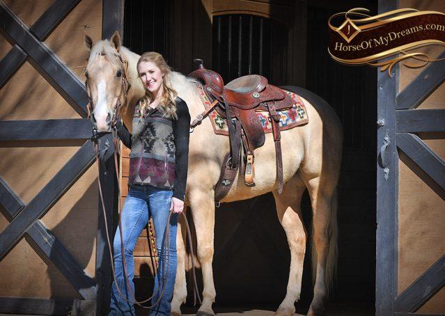 005-Shiner-Golden-Palomino-AQHA-NRHA-Reiner-Reining-Quarter-Horse-Gelding-For-Sale