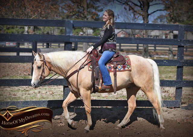 006-Shiner-Golden-Palomino-AQHA-NRHA-Reiner-Reining-Quarter-Horse-Gelding-For-Sale