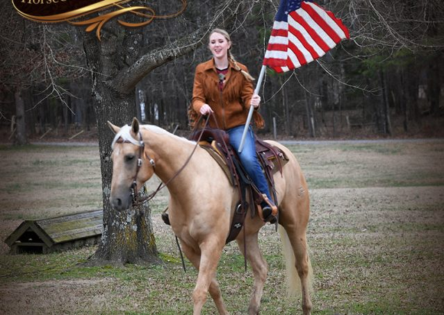 009-Odie-AQHA-Palomino-Gelding-For-Sale