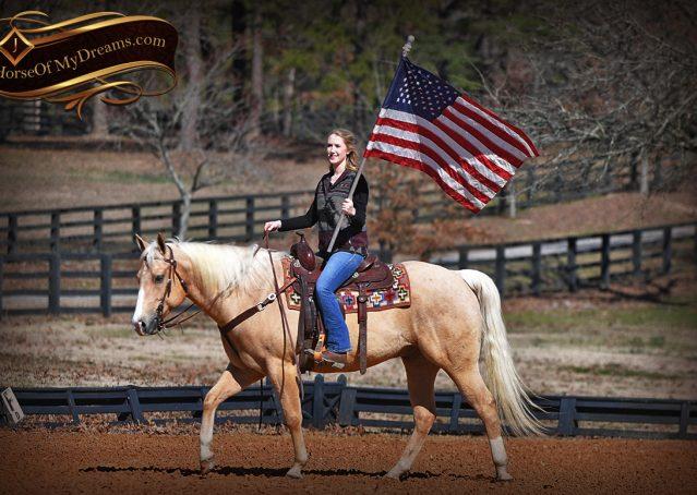 009-Shiner-Golden-Palomino-AQHA-NRHA-Reiner-Reining-Quarter-Horse-Gelding-For-Sale