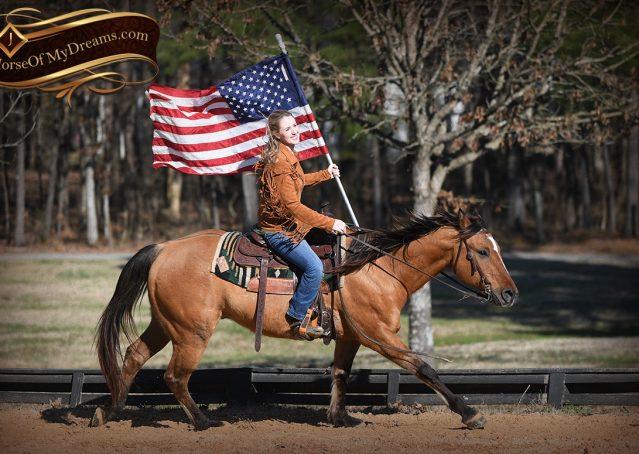 013-Phoenix-Buckskin-Dun-Quarter-Horse=Gelding-For-Sale