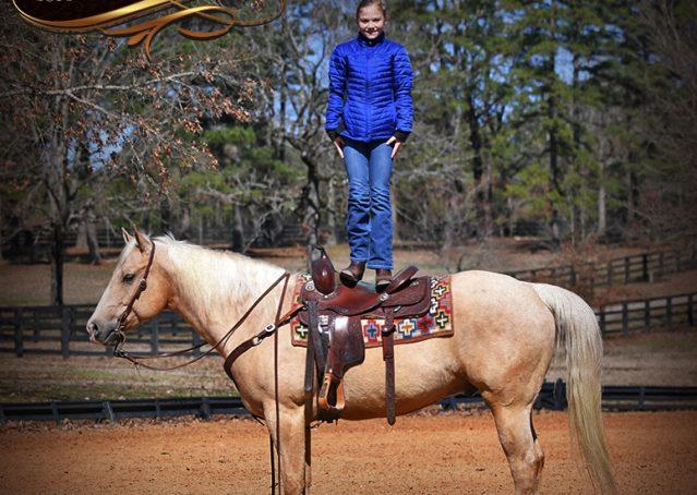 014-Shiner-Golden-Palomino-AQHA-NRHA-Reiner-Reining-Quarter-Horse-Gelding-For-Sale