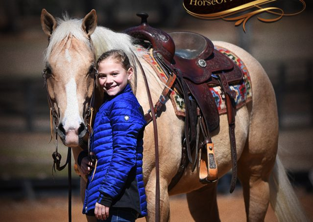 017-Shiner-Golden-Palomino-AQHA-NRHA-Reiner-Reining-Quarter-Horse-Gelding-For-Sale