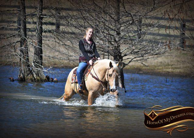 030-Shiner-Golden-Palomino-AQHA-NRHA-Reiner-Reining-Quarter-Horse-Gelding-For-Sale