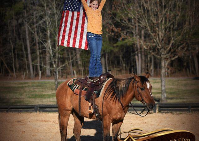034-Phoenix-Buckskin-Dun-Quarter-Horse=Gelding-For-Sale