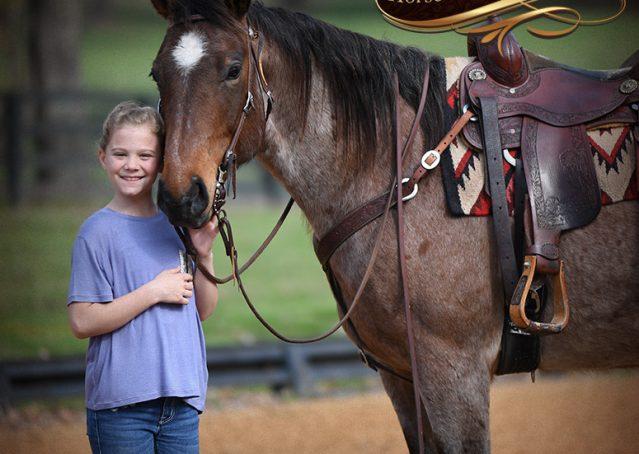 016-Levi-Bay-Roan-Quarter-Horse-For-Sale