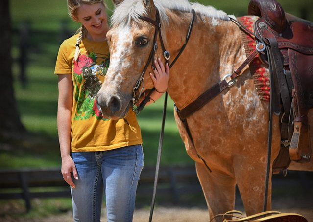 024-Regis-Palomino-Appaloosa-Gelding-For-Sale