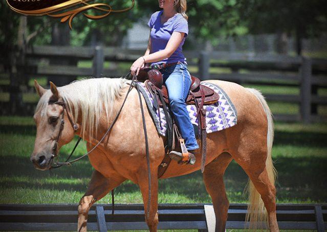 010-Big-Vegas-Palomino-Quarter-Horse-Gelding-For-Sale