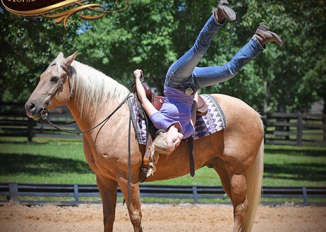 013-Big-Vegas-Palomino-Quarter-Horse-Gelding-For-Sale