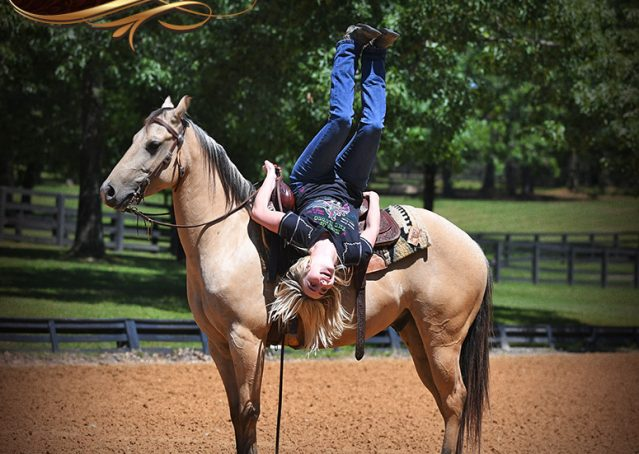 022-Prince-AQHA-Buttermilk-Buckskin-Quarter-Horse-Gelding-For-Sale