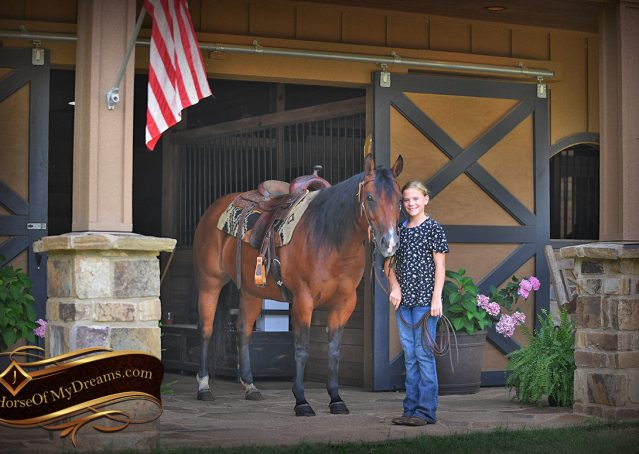001-Lena-Bay=AQHA-Playgun-Mare-For-Sale
