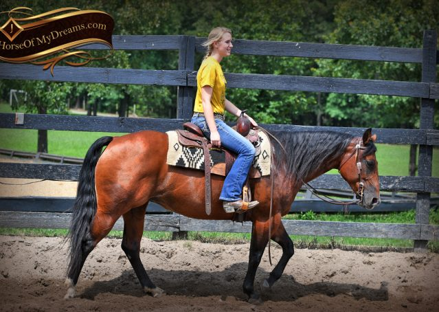 003-Lena-Bay=AQHA-Playgun-Mare-For-Sale