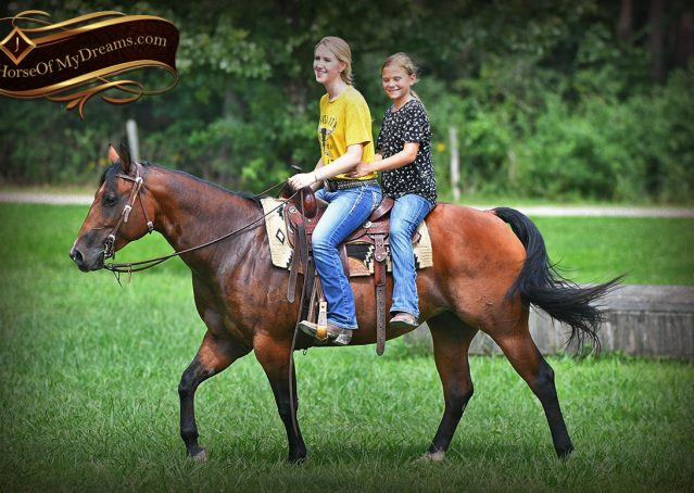 004-Lena-Bay=AQHA-Playgun-Mare-For-Sale
