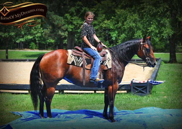 008-Lena-Bay=AQHA-Playgun-Mare-For-Sale