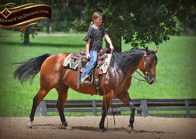 009-Lena-Bay=AQHA-Playgun-Mare-For-Sale