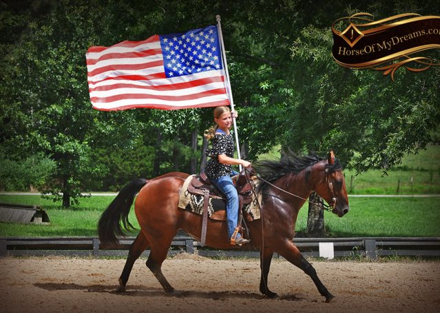 011-Lena-Bay=AQHA-Playgun-Mare-For-Sale