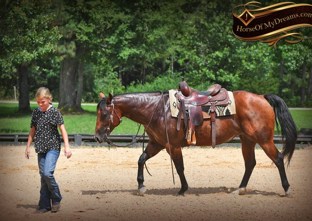 014-Lena-Bay=AQHA-Playgun-Mare-For-Sale