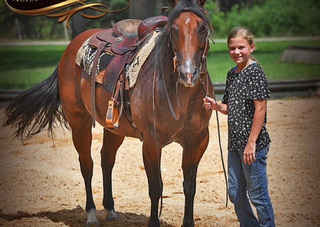 015-Lena-Bay=AQHA-Playgun-Mare-For-Sale