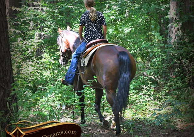 022-Lena-Bay=AQHA-Playgun-Mare-For-Sale
