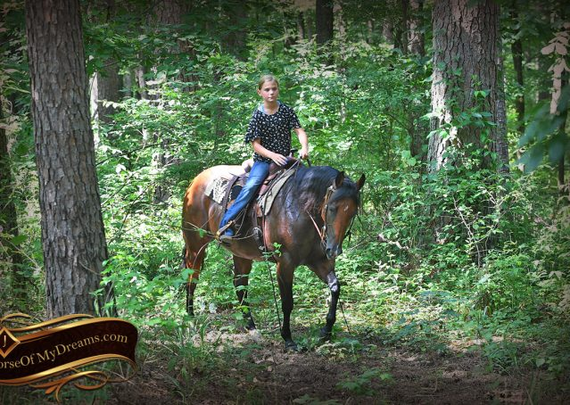 023-Lena-Bay=AQHA-Playgun-Mare-For-Sale