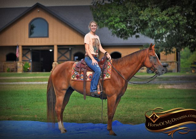 008-Beau-Sorrel-AQHA-Gelding-For-Sale