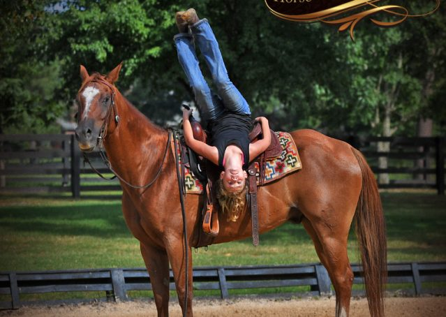 010-Beau-Sorrel-AQHA-Gelding-For-Sale