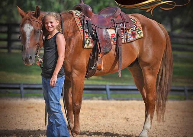 012-Beau-Sorrel-AQHA-Gelding-For-Sale