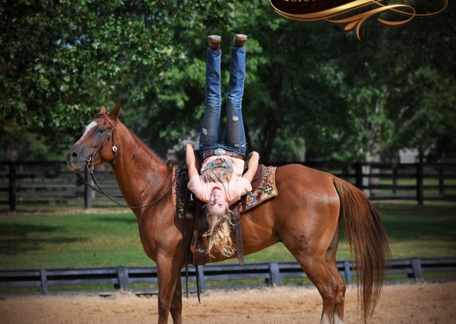 018-Beau-Sorrel-AQHA-Gelding-For-Sale