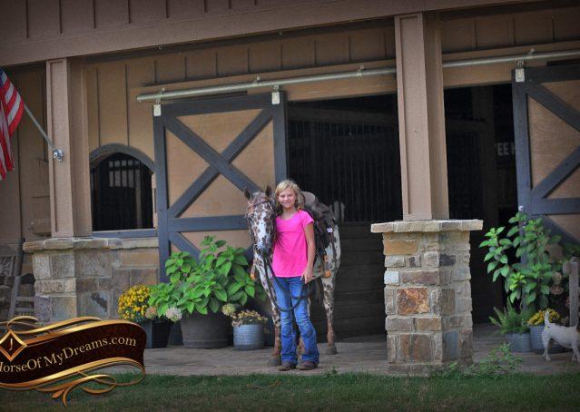004-Sully-Leopard-appaloosa-POA-kids-pony-fancy-for-sale