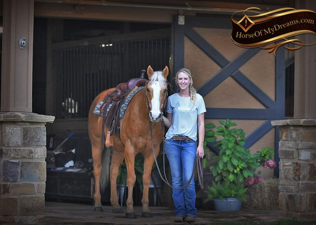 005-Indigo-AQHA-Golden-Palomino-Gelding-For-Sale
