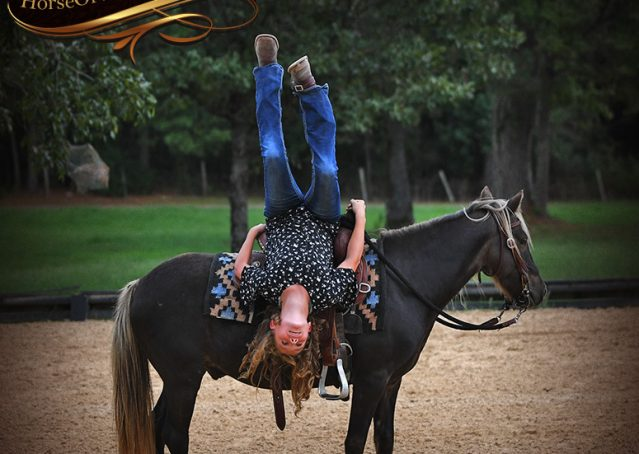 007-Irish-Chocolate-Palomino-kids-Pony-For-Sale