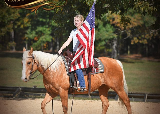 015-Indigo-AQHA-Golden-Palomino-Gelding-For-Sale
