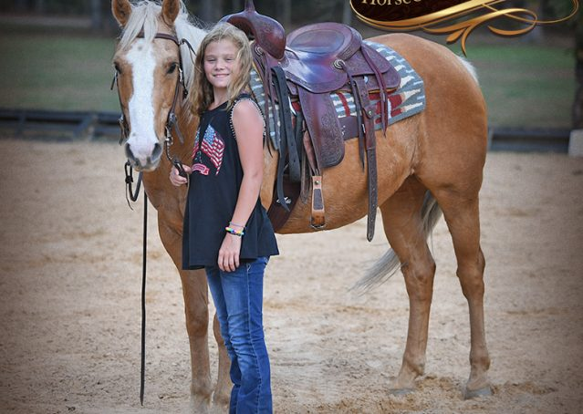 021-Indigo-AQHA-Golden-Palomino-Gelding-For-Sale
