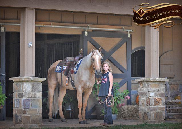 001-Frankie-AQHA=Palomino-Quarter-Horse-Western-Pleasure-for-sale