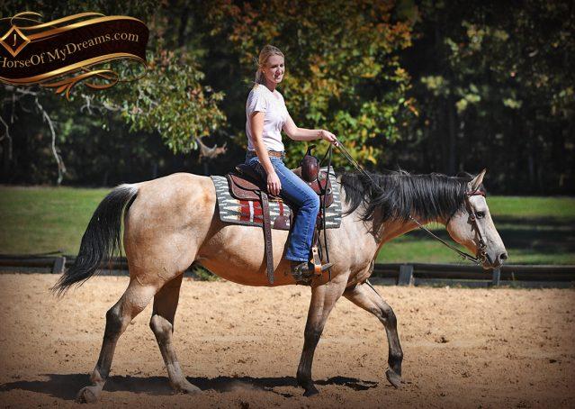 005-Buck-AQHA-Buckskin-gelding-for-sale