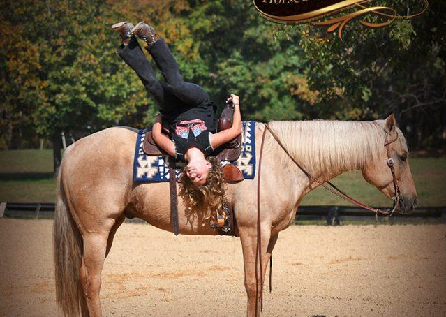 008-Frankie-AQHA=Palomino-Quarter-Horse-Western-Pleasure-for-sale
