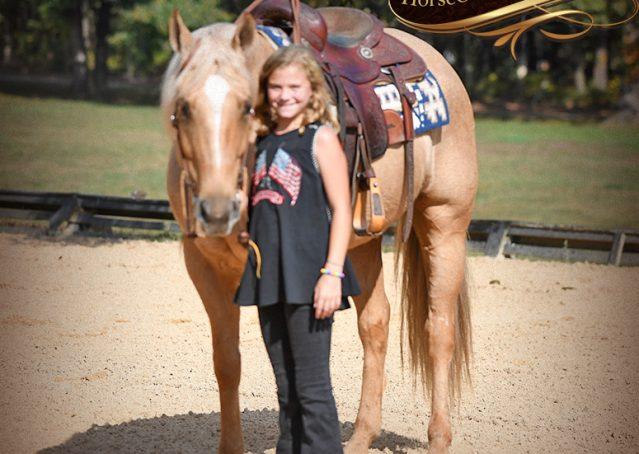 010-Frankie-AQHA=Palomino-Quarter-Horse-Western-Pleasure-for-sale