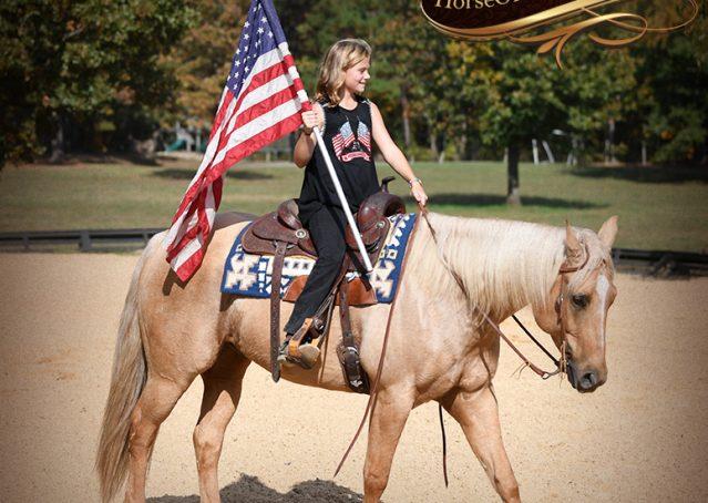 011-Frankie-AQHA=Palomino-Quarter-Horse-Western-Pleasure-for-sale