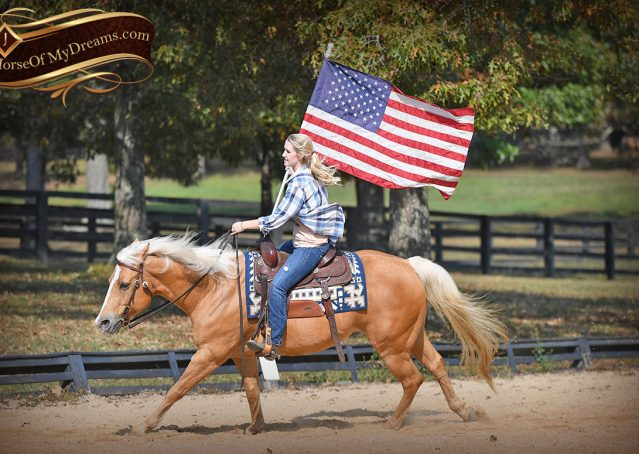 013-Val-AQHA-Golden-Palomino-For-Sale