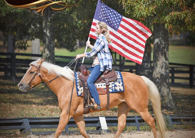 014-Val-AQHA-Golden-Palomino-For-Sale