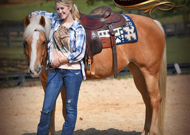 015-Val-AQHA-Golden-Palomino-For-Sale